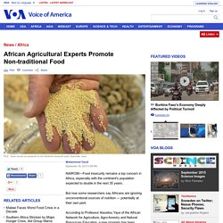 African Agricultural Experts Promote Non-traditional Food