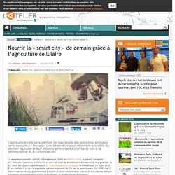 Nourrir la « smart city » de demain grâce à l'agriculture cellulaire
