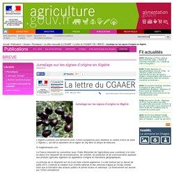 MAAF CGAAER 08/06/15 Jumelage sur les signes d'origine en Algérie