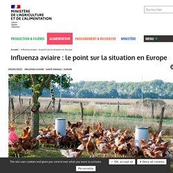 Influenza aviaire: le point sur la situation en Europe