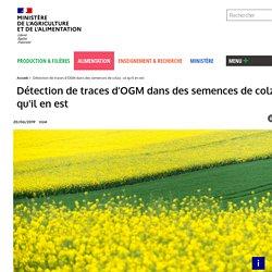 MAA 20/06/19 Détection de traces d'OGM dans des semences de colza : ce qu'il en est