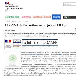 MAA CGAAER - SEPT 2020 - Bilan 2019 de l'expertise des projets du PEI Agri