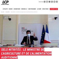 LCP 19/11/20 SELS NITRITÉS : LE MINISTRE DE L'AGRICULTURE ET DE L'ALIMENTATION AUDITIONNÉ