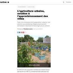 L'agriculture urbaine, solution à l'approvisionnement des villes