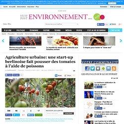 Agriculture urbaine: une start-up berlinoise fait pousser des tomates à l'aide de poissons