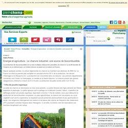 Energie et agriculture : Le chanvre industriel, une source de biocombustible