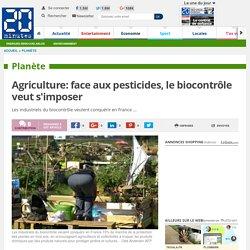 Agriculture: face aux pesticides, le biocontrôle veut s'imposer