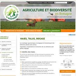 Haies, talus, bocage- Agriculture et biodiversité en Bretagne