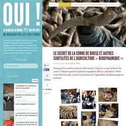 Le secret de la corne de bouse et autres subtilités de l'agriculture «biodynamique»