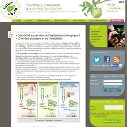 « Des OGM au service de l'agriculture biologique ? » (Cité des sciences et de l'industrie)