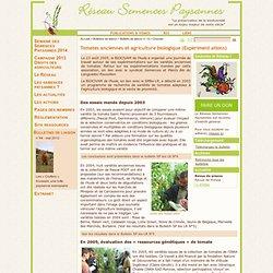 Tomates anciennes et agriculture biologique
