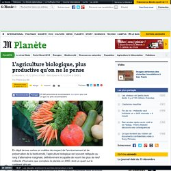 L'agriculture biologique, plus productive qu'on ne le pense