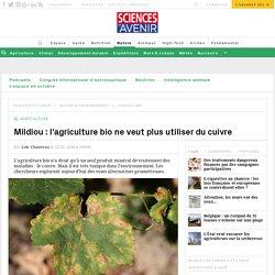 """Mildiou : l'agriculture bio ne veut plus du cuivre et de la """"bouillie bordelaise"""""""