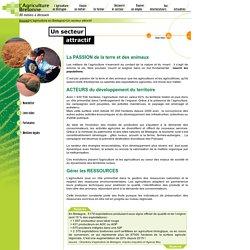 L'agriculture en Bretagne - Un secteur attractif