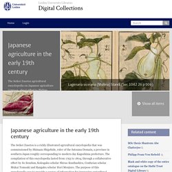 Japanese agriculture in the early 19th century