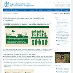 Les 5 choses que vous devez savoir sur l'agriculture de conservation