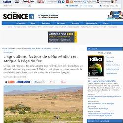 L'agriculture, facteur de déforestation en Afrique à l'âge du fer