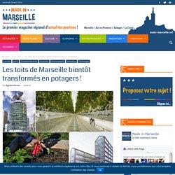 L'agriculture urbaine se développe partout et même à Marseille