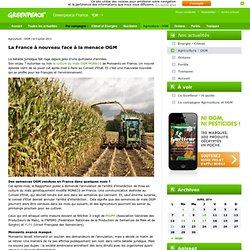 La France à nouveau face à la menace OGM