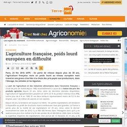 La part de l'agriculture dans l'économie française baisse de plus en plus