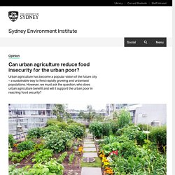 Can urban agriculture reduce food insecurity for the urban poor? — Sydney Environment Institute