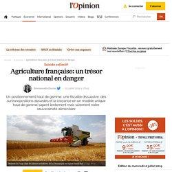 Agriculture française: un trésor national en danger