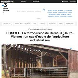 DOSSIER. La ferme-usine de Berneuil (Haute-Vienne) : un cas d'école de l'agriculture industrialisée