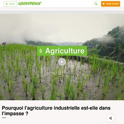 L'agriculture industrielle est dans l'impasse - Greenpeace France