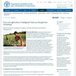 """FAO -Nouvelles:Pour une agriculture """"intelligente"""" face au changement climatique"""