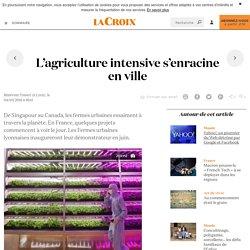 L'agriculture intensive s'enracine en ville - La Croix