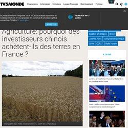Agriculture: pourquoi des investisseurs chinois achètent-ils des terres en France ?