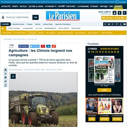 Agriculture : les Chinois lorgnent nos campagnes