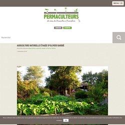 Agriculture naturelle étagée d'Olivier Barbié - Permaculture