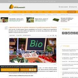L'agriculture bio est en pleine croissance et grande pourvoyeuse d'emplois