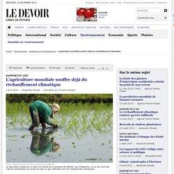 L'agriculture mondiale souffre déjà du réchauffement climatique
