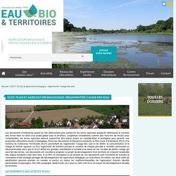 SCoT, PLU(i) et agriculture biologique : réglementer l'usage des sols