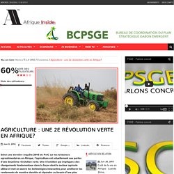 Agriculture : une 2e révolution verte en Afrique?