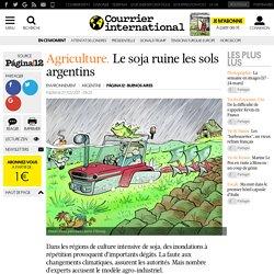 Agriculture. Le soja ruine les sols argentins