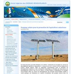 Pompage solaire pour la promotion de l'agriculture saharienne
