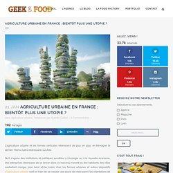 Agriculture urbaine en France: bientôt plus une utopie?
