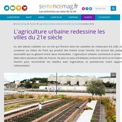SEMENCEMAG - OCT 2016 - L'agriculture urbaine redessine les villes du 21e siècle