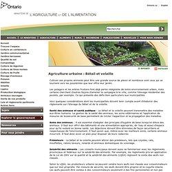OMAFRA 16/07/12 Agriculture urbaine : Bétail et volaille