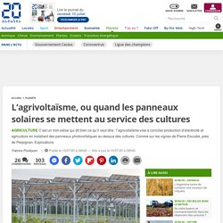 L'agrivoltaïsme, ou quand les panneaux solaires se mettent au service des cultures 10 juillet 2020