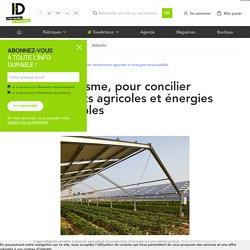 L'agrivoltaïsme, une piste pour concilier rendements et énergies renouvelables