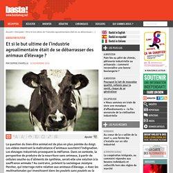 Et si le but ultime de l'industrie agroalimentaire était de se débarrasser des animaux d'élevage