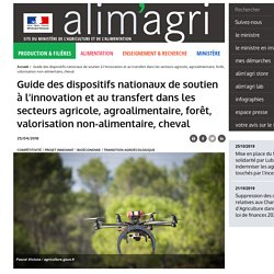 MAA 25/04/18 Guide des dispositifs nationaux de soutien à l'innovation et au transfert dans les secteurs agricole, agroalimentaire, forêt, valorisation non-alimentaire, cheval