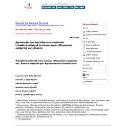 Rev. biol. trop vol.67 n.2 San José Apr. 2019 Agrobacterium tumefaciens-mediated transformation of common bean (Phaseolus vulgaris) var. Brunca