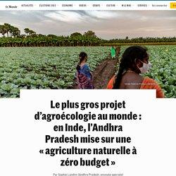 Le plus gros projet d'agroécologie au monde : en Inde, l'Andhra Pradeshmise sur une «agriculture naturelle à zéro budget»