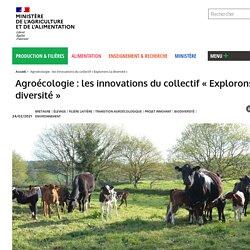 Agroécologie : les innovations du collectif «Explorons la diversité»