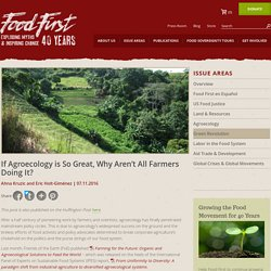 If Agroecology is So Great, Why Aren't All Farmers Doing It? : Food First